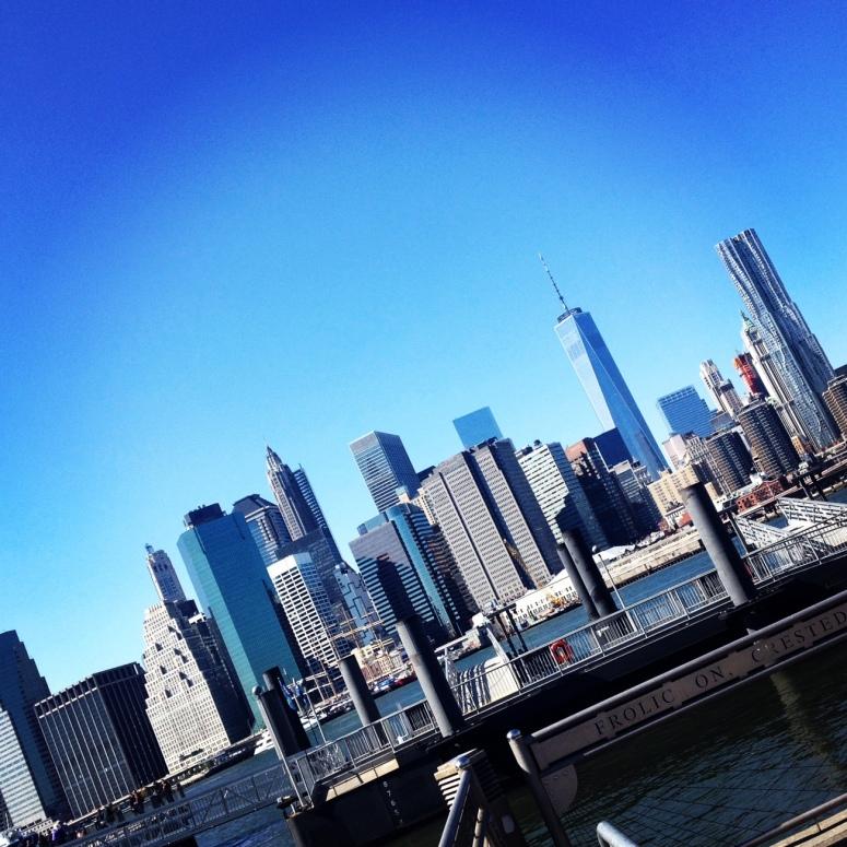 Brooklyn Bridge Park NYC Skyline