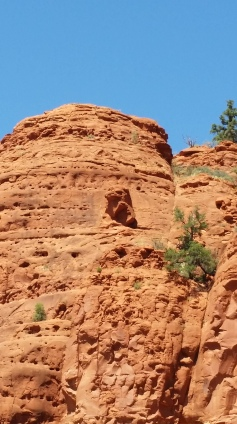 Can you spot the eagle in the rock? They claim it's a natural formation.