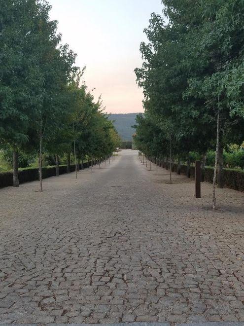 walkway-monverde